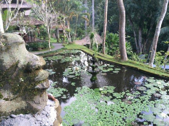 Hotel Tjampuhan & Spa: Beautiful cascading gardens
