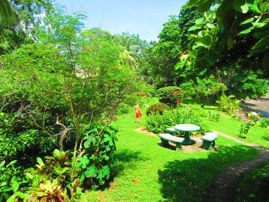 PorQueNo?: beautiful grounds around the restaurant