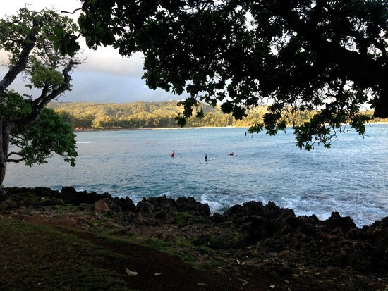 Turtle Bay Resort : Surf Lessons