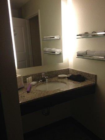 Residence Inn San Diego Carlsbad : sink separate from toilet area