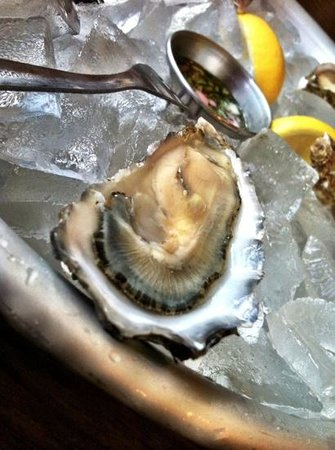 Fisherman's Cove: Tomales Bay Oysters