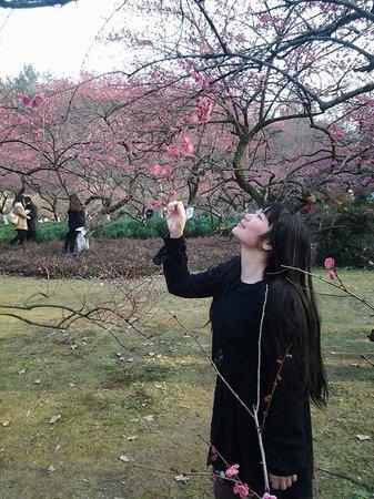 Hangzhou Botanical Garden: Hangzhou Botanic Garden