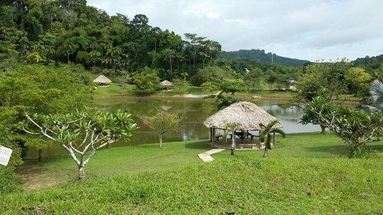 La Vega Estate : Beautiful relaxing place