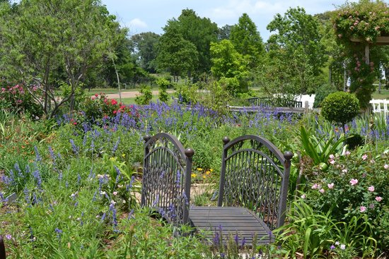 East Texas Arboretum & Botanical Society : Little bridge
