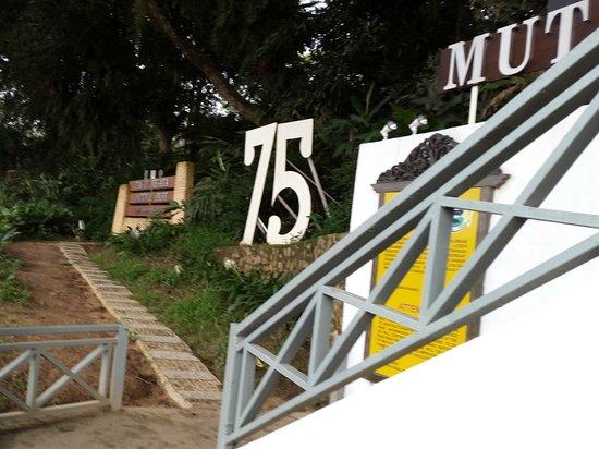 Mutiara Taman Negara : Hotel