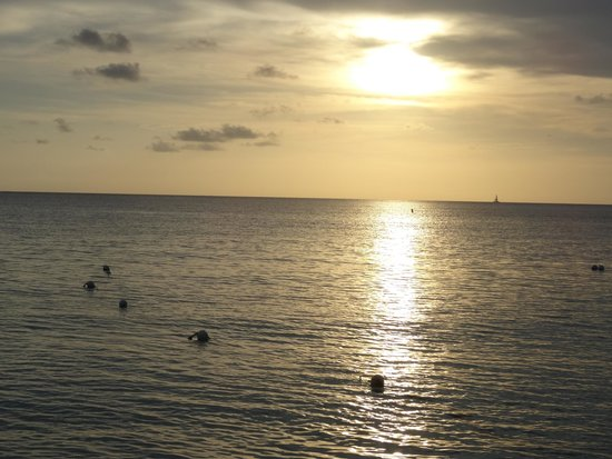 The Westin Grand Cayman Seven Mile Beach Resort & Spa : view from the beach
