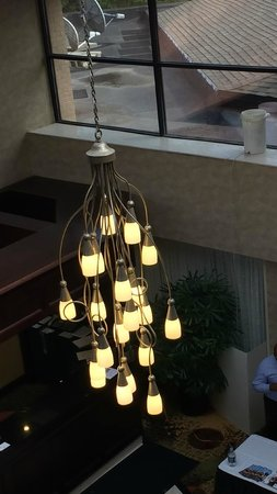 Radisson Hotel Detroit-Farmington Hills: Five gallon bucket with hose running down to main floor by front desk.