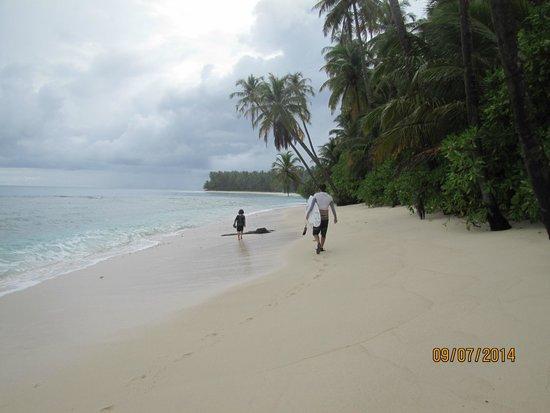 WavePark Mentawai Resort: Beautiful beachfront.