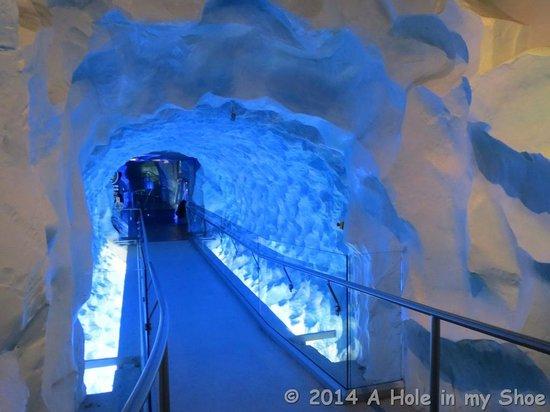 Kelly Tarlton's Sea Life Aquarium : Snow Tunnel