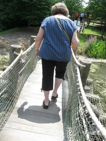 Creation Museum: Walking the rope bridge. There's a zip-line here too! :D