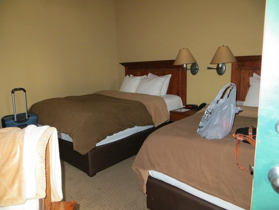 Buffalo Mountain Lodge: 2 queen beds