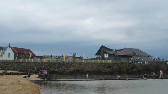 Scottish Seabird Centre: The Seabird centre from the beach