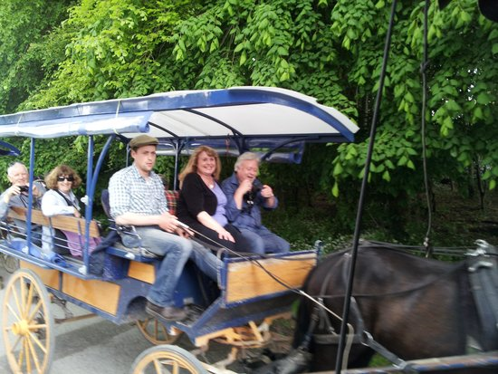 Killarney Towers Hotel & Leisure Centre: A ride in a jaunting cart, Killarney National Park