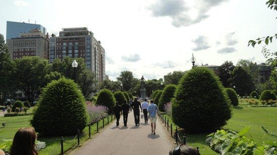 Boston Common : Park view