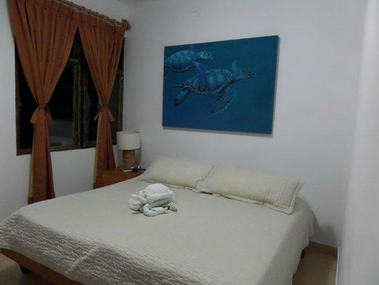 Hotel Fiesta: habitación tortuguera!