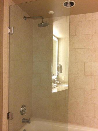 Madison Hotel: shower