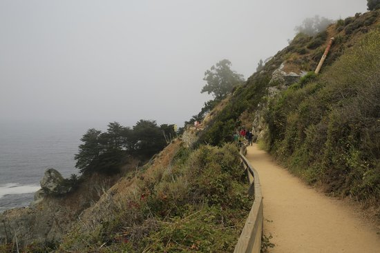 Julia Pfeiffer Burns State Park : Trail to the Point