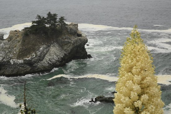 Julia Pfeiffer Burns State Park : Cold Ocean