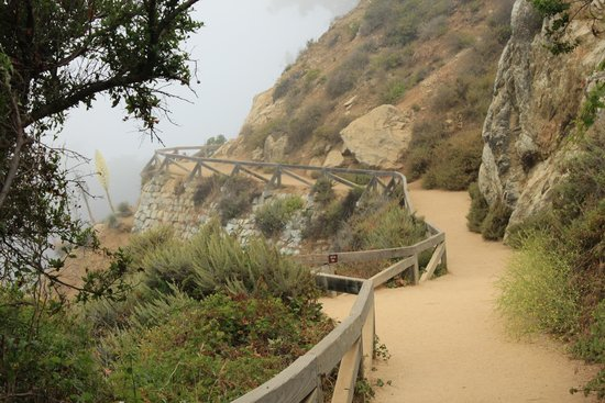 Julia Pfeiffer Burns State Park: Almost There!