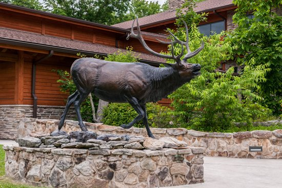 Elk Country Visitor Center: Bronze Elk Sculpture In Front of Visitor Center