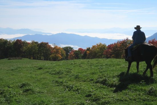 The Cataloochee Ranch : Morning ride to Hemphill Bald, and view of Smoky Mts.