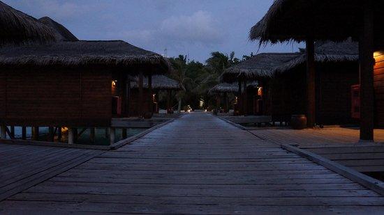 Anantara VeliMaldivesResort : The bungalows