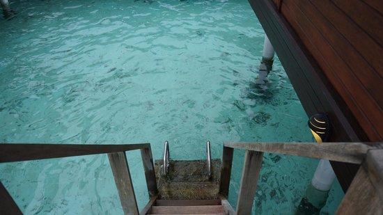Anantara VeliMaldivesResort: Step right into the water