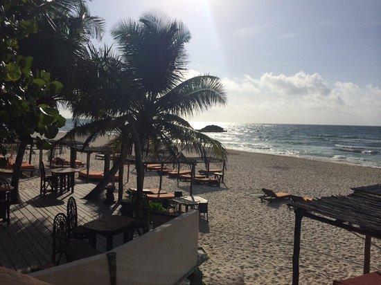 Amansala Eco-Chic Resort + Retreat : Resort