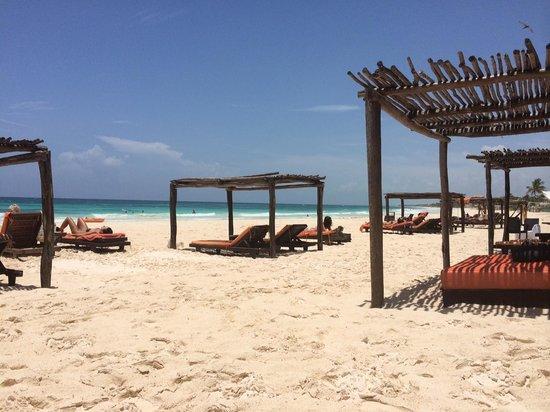 Amansala Eco-Chic Resort + Retreat : amansala beach beds