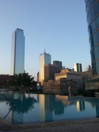 Omni Dallas Hotel : Fantastic Pool