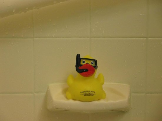 """Chancellor Hotel on Union Square: Our own """"Rubber Ducky"""" in our bathroom, at The Chancellor Hotel"""