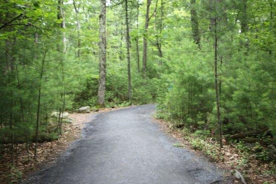 George W. Childs Park: Amazing walkways