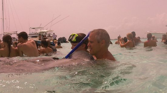 Stingray Sailing: hanging with the rays