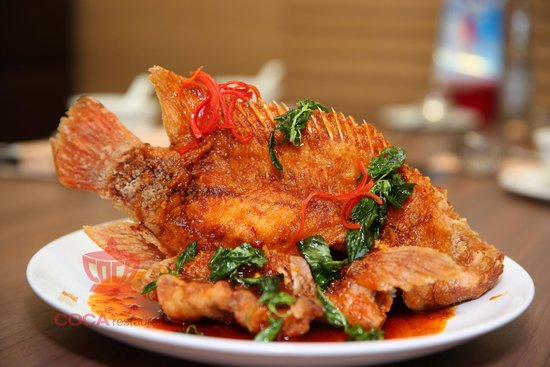 Deep fried fish in thai sauce picture of coca suki for Fried fish restaurants