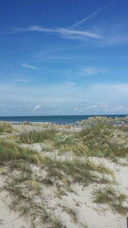 Disney's Hilton Head Island Resort: View of the beach from the beach house boardwalk.