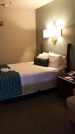 Disney's Hilton Head Island Resort : Studio Bed