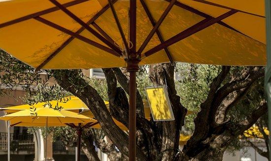 Le Provencal Cafe
