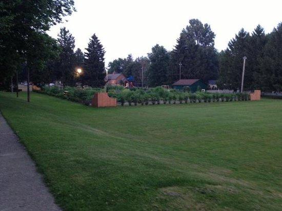 Potter Park