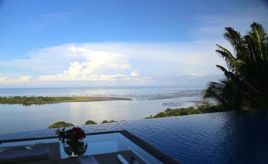 El Castillo Hotel : Infinity Pool and River/Ocean View