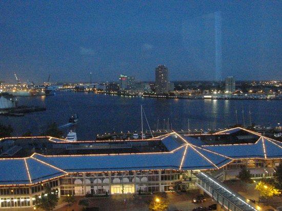 Norfolk Waterside Marriott : Evening view of the water