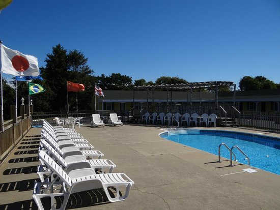 Jonathan Edwards Motel: Pool area