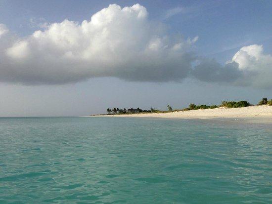 Ocean Club Resort: Our beach