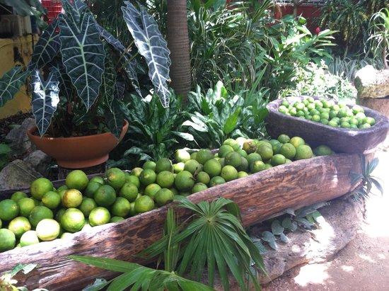 La Cueva del Chango: fresh limes