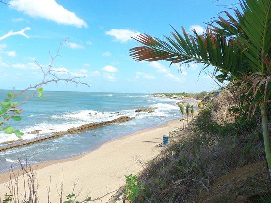 MYRINaMAR Bed & Breakfast : Der Strand unterhalb des Hotels