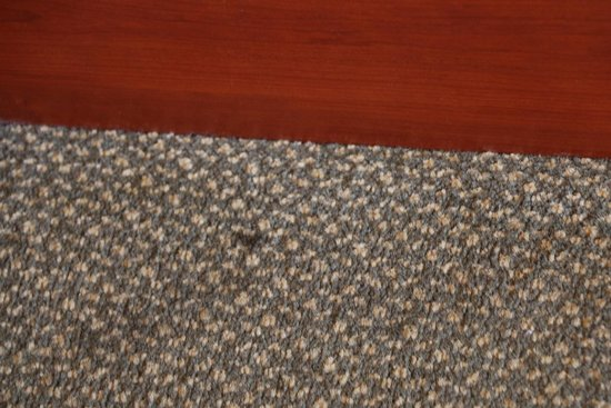 Quality Inn & Suites at Olympic National Park: carpet stains