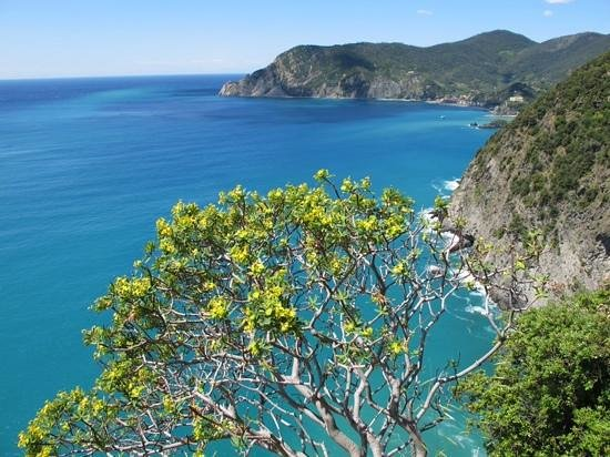 Footpath Monterosso - Vernazza: Amazing views I will never forget!