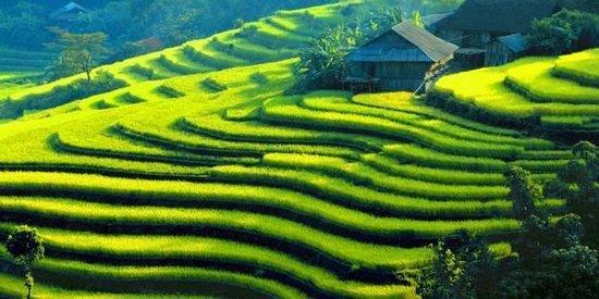 Hanoi Tours Vietnam - Private Day Tours: Sapa - Vietnam Tours with Asia Travel Expert Co., Ltd