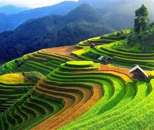 Hanoi Tours Vietnam - Private Day Tours