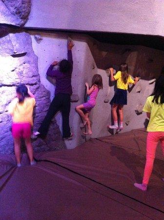Ontario Science Centre: Rock Climbing