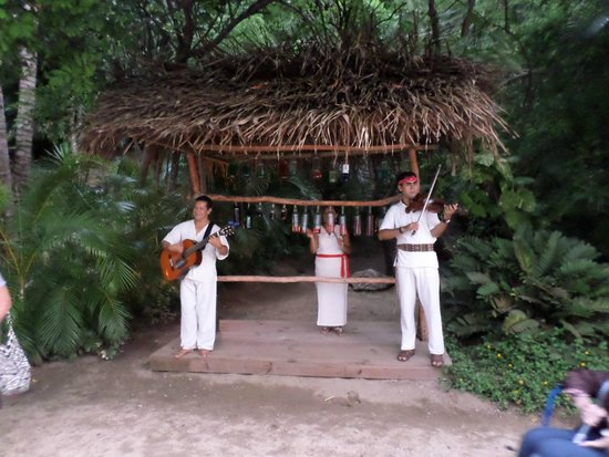 Rhythms of the Night by Vallarta Adventures: Asi Nos Reciben..